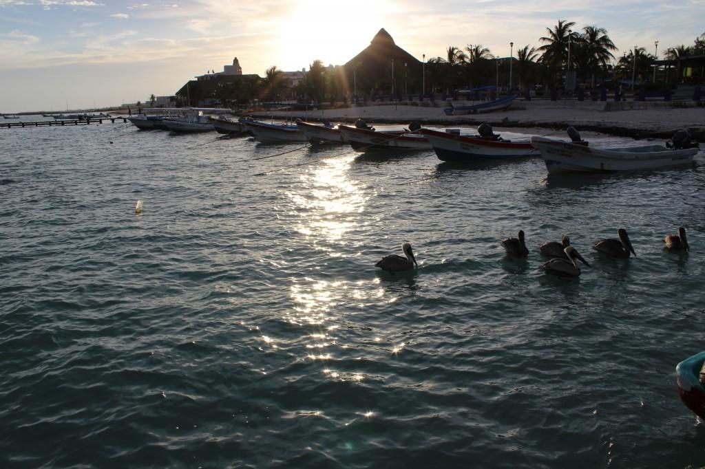 Fishing boats in Puerto Morelos, Mexico.