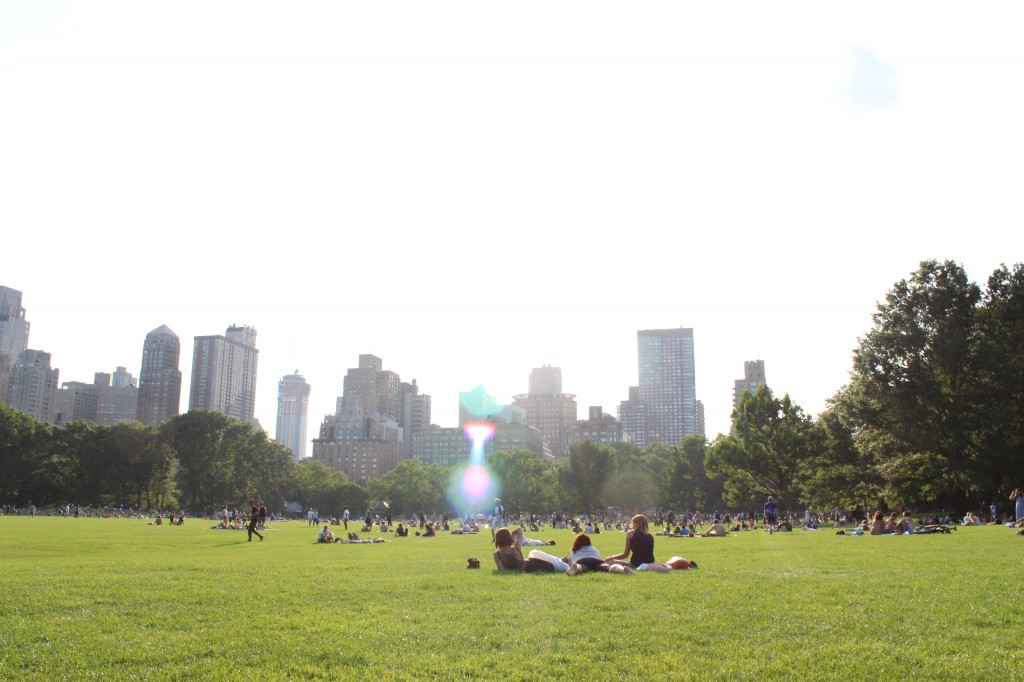 Enjoying a sunny day, picnicking on the grass, in Central Park, Manhattan,  NYC. (2013)